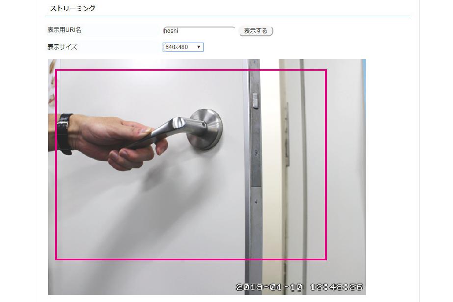 Webカメラ連動機能Web UI画面(動体検知時)